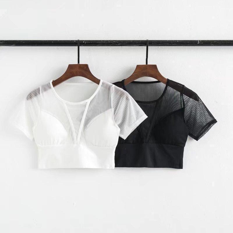 Hot and Sexy Mesh Crop Top - The Black Ravens